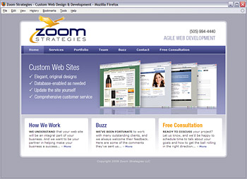 Zoom Strategies